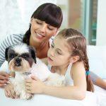 Hogar pet friendly (como tener mascotas sin morir en el intento)