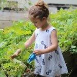Jardinería con los niños, inicio de una aventura de vida
