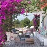 Verano Green - Consejos para que tus plantas sobrevivan a las altas temperaturas