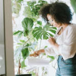 Por qué las plantas de interior marcan la diferencia en el autoaislamiento